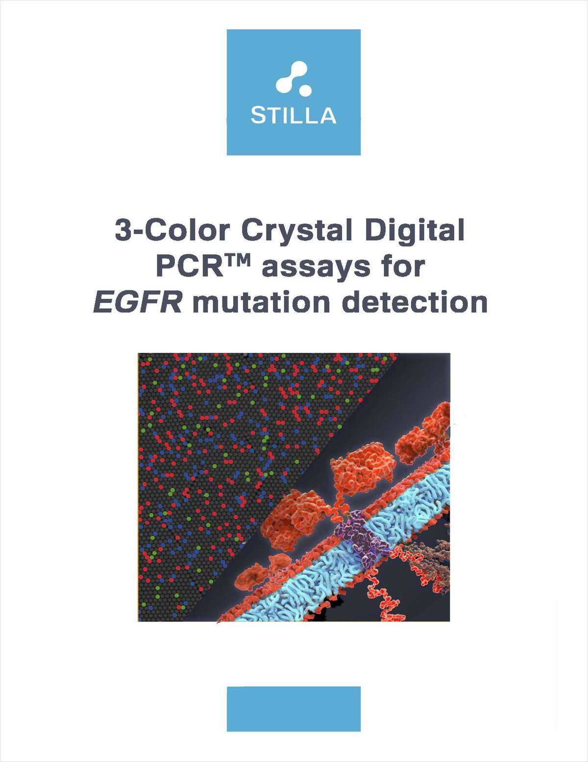 3-Color Crystal Digital PCR Assays for EGFR Mutation Detection