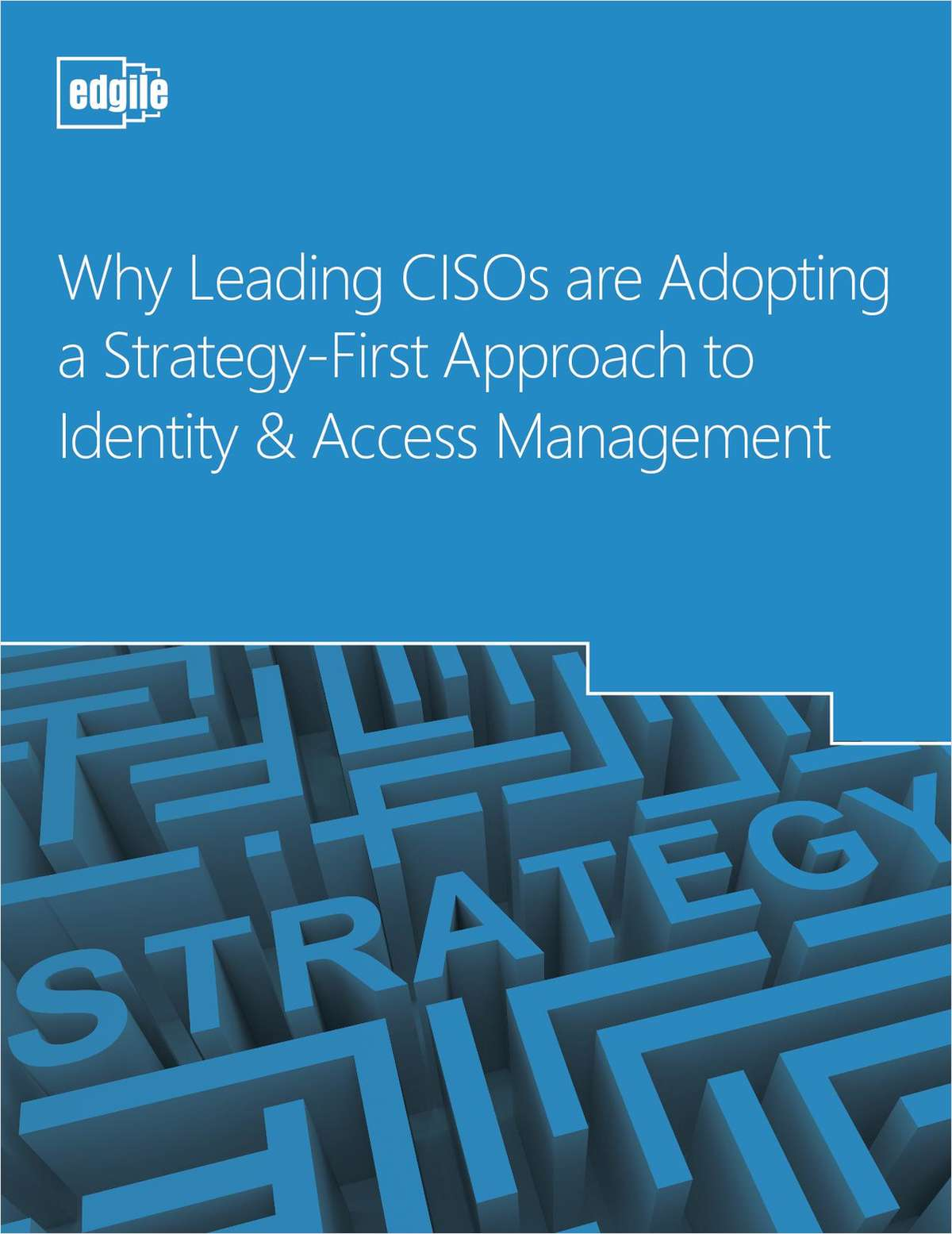 White paper:  Why Leading CISOs are Adopting a Strategy-First Approach to IAM