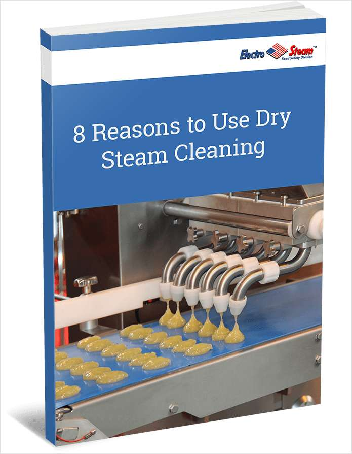 8 Reasons to Use Dry Steam Cleaning