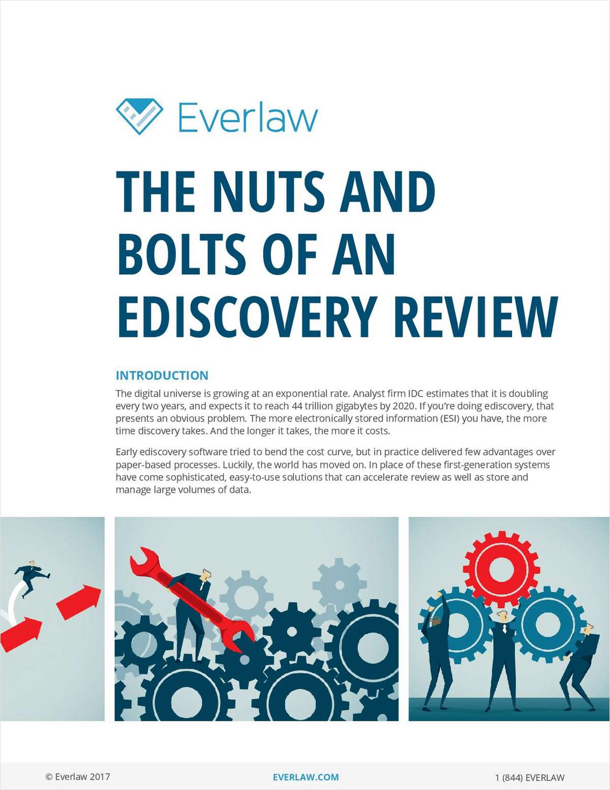 The Nuts and Bolts of an Ediscovery Review