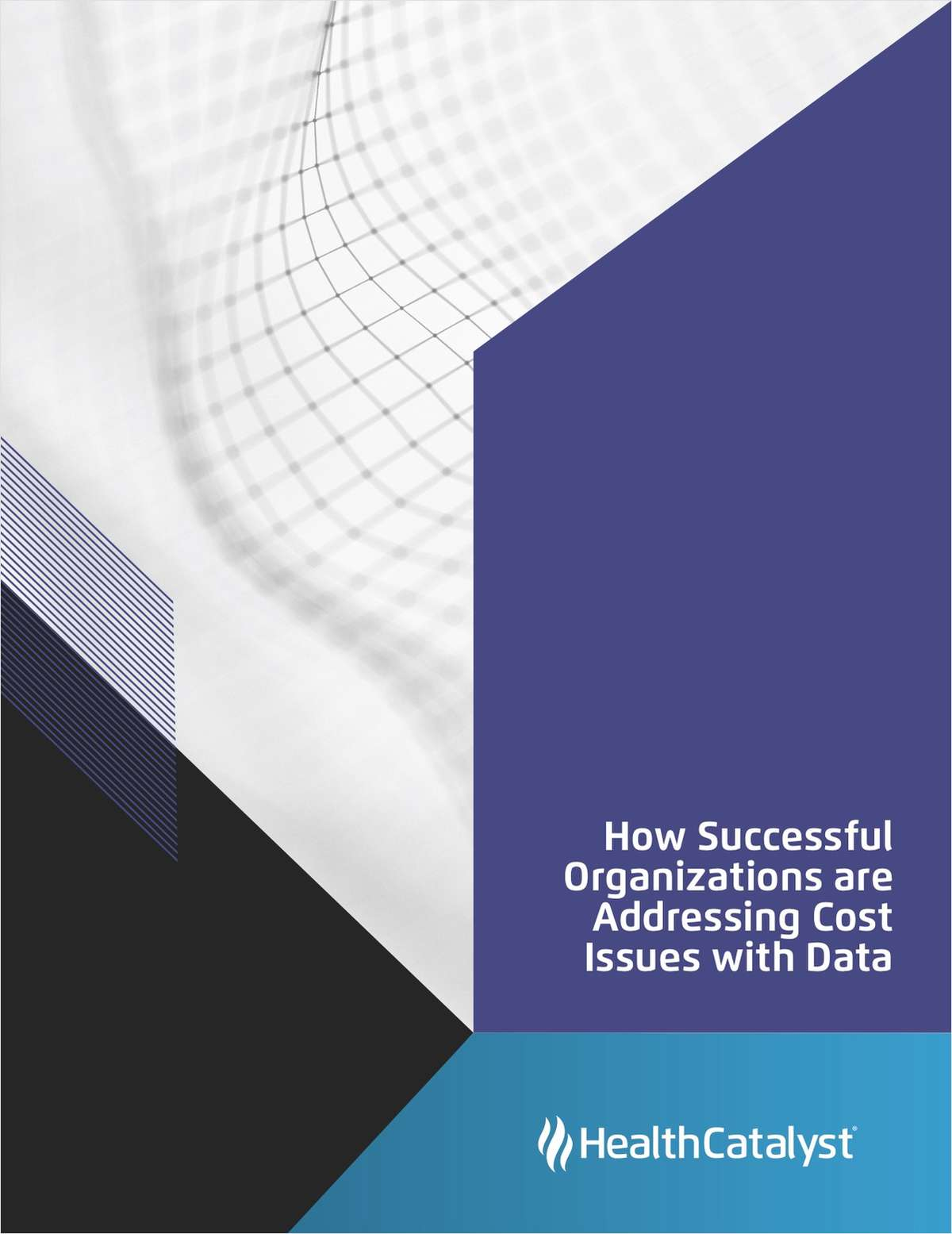 How Successful Organizations are Addressing Cost Issues with Data