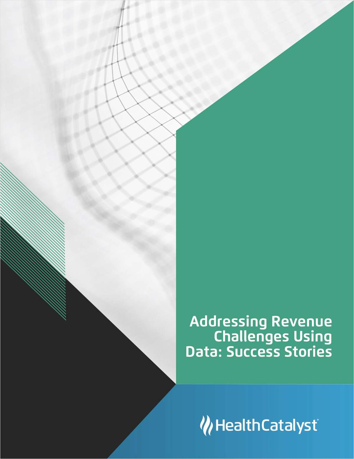 Addressing Revenue Challenges Using Data: Success Stories