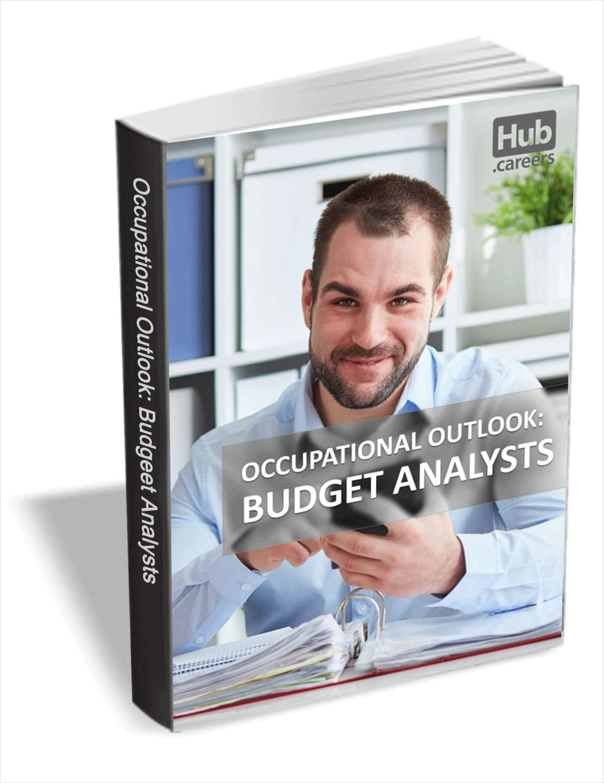 Budget Analysts - Occupational Outlook