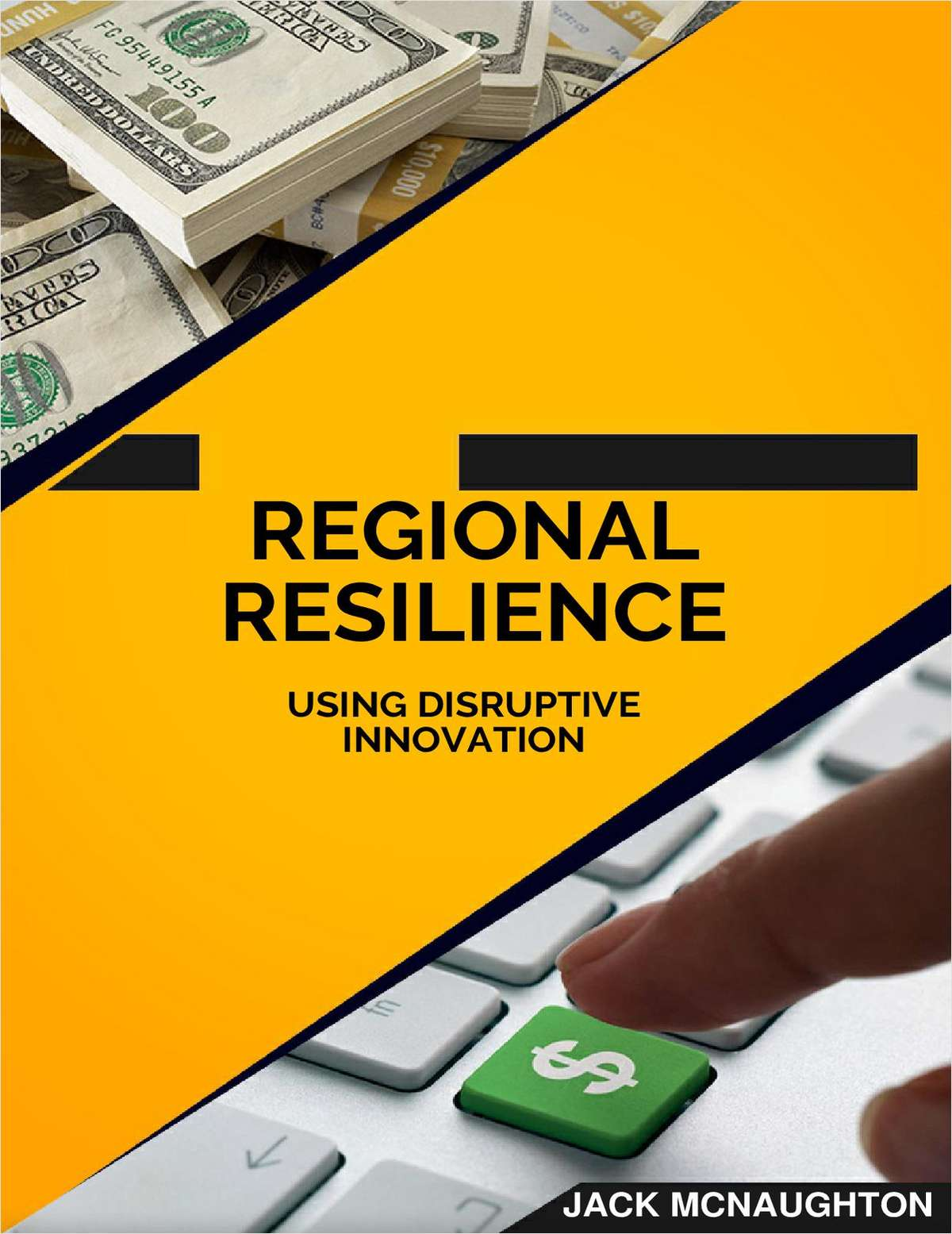 Regional Resilience - Using Disruptive Innovation