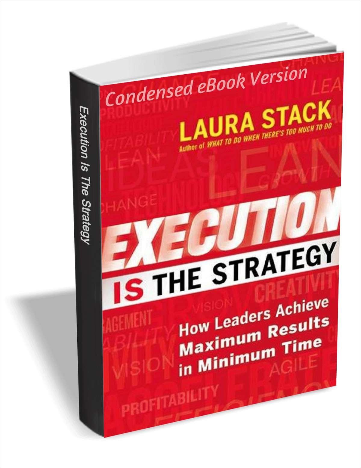 Execution IS the Strategy - How Leaders Achieve Maximum Results in Minimum Time (Condensed eBook Version)