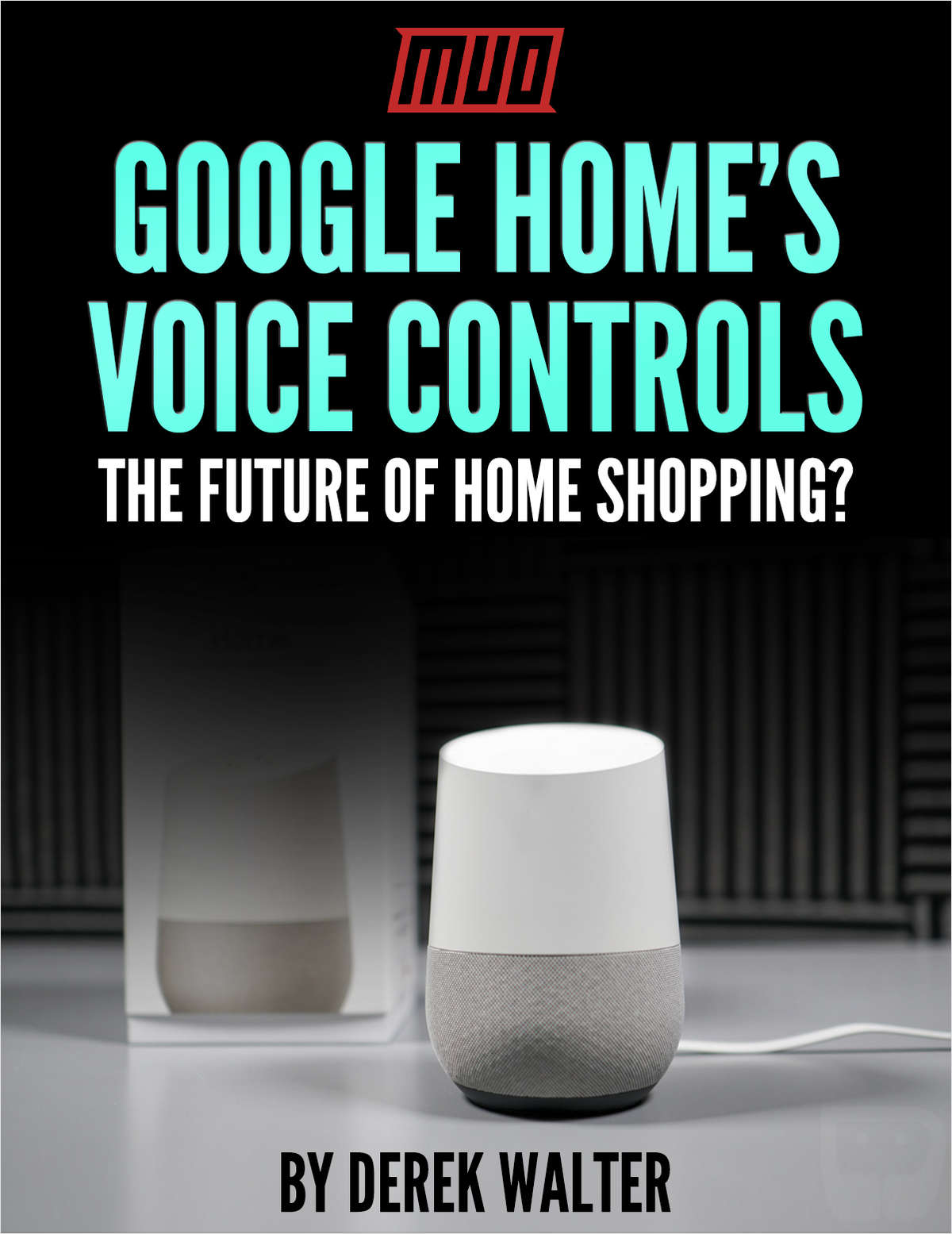 Google Home's Voice Controls - The Future of Home Shopping?