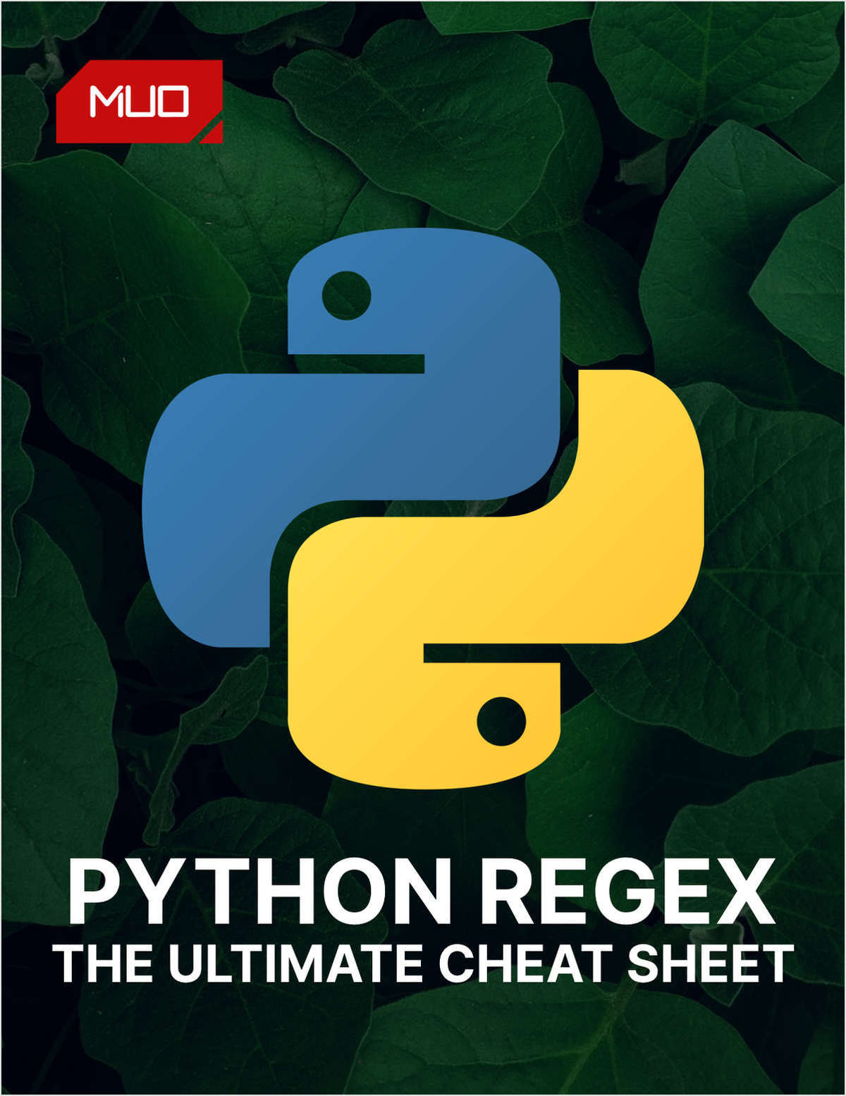 The Python RegEx Cheat Sheet for Budding Programmers
