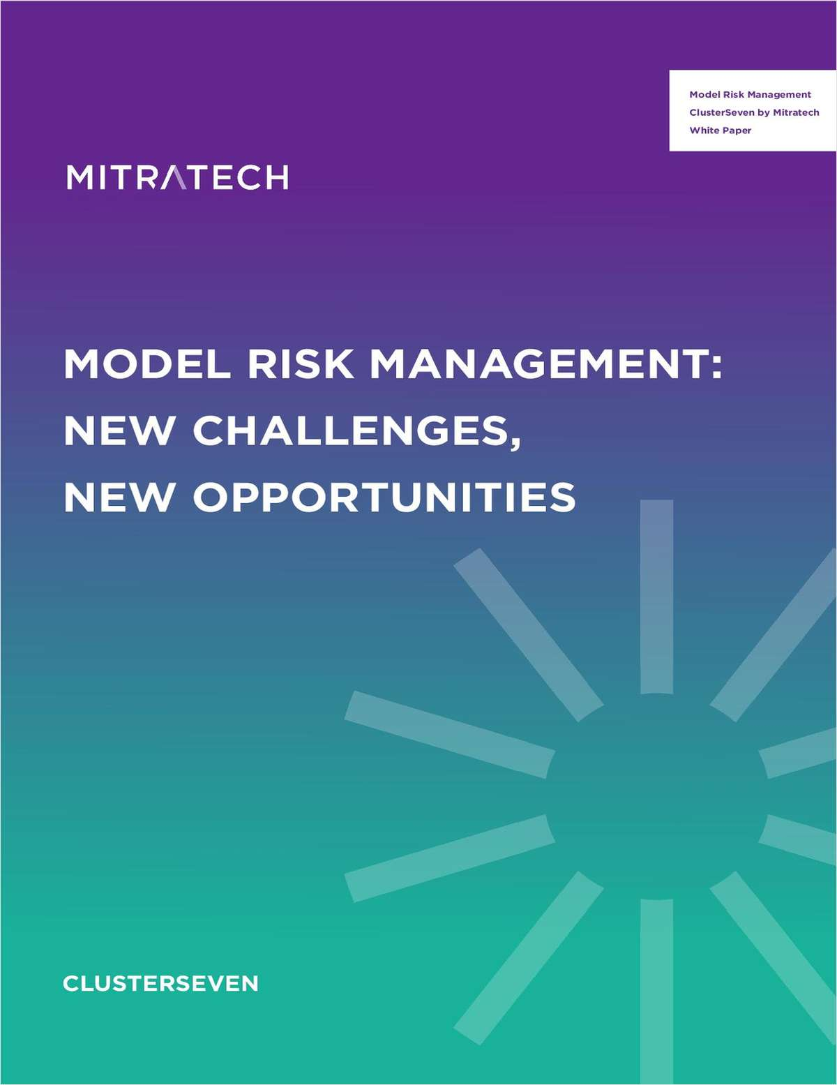 White Paper on Model Risk Management: New Challenges, New Opportunities