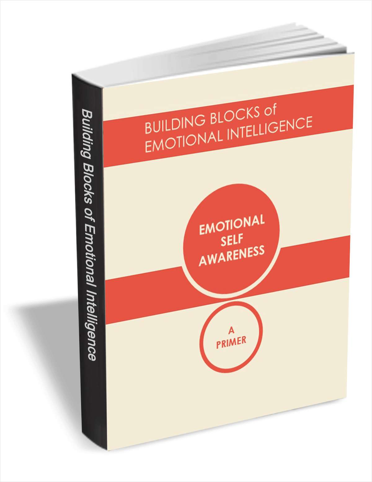 Building Blocks of Emotional Intelligence - Emotional Self Awareness