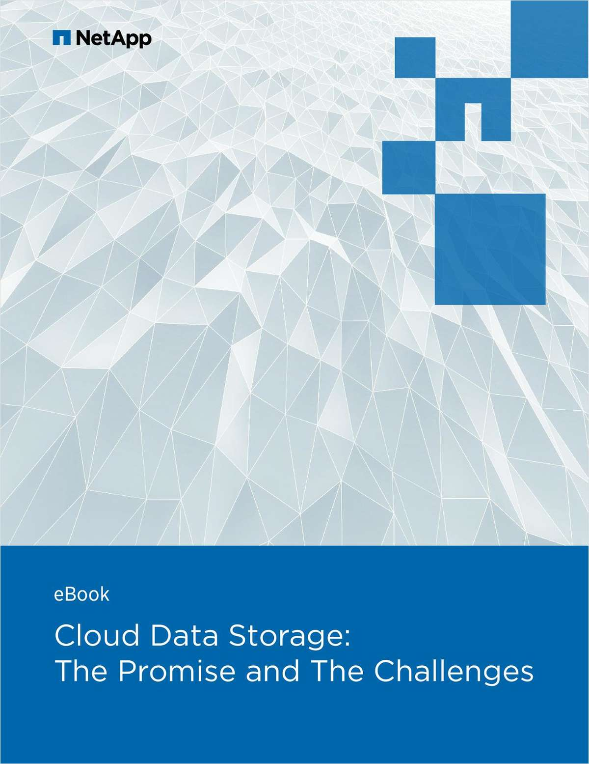 Cloud Data Storage:The Promise and The Challenges