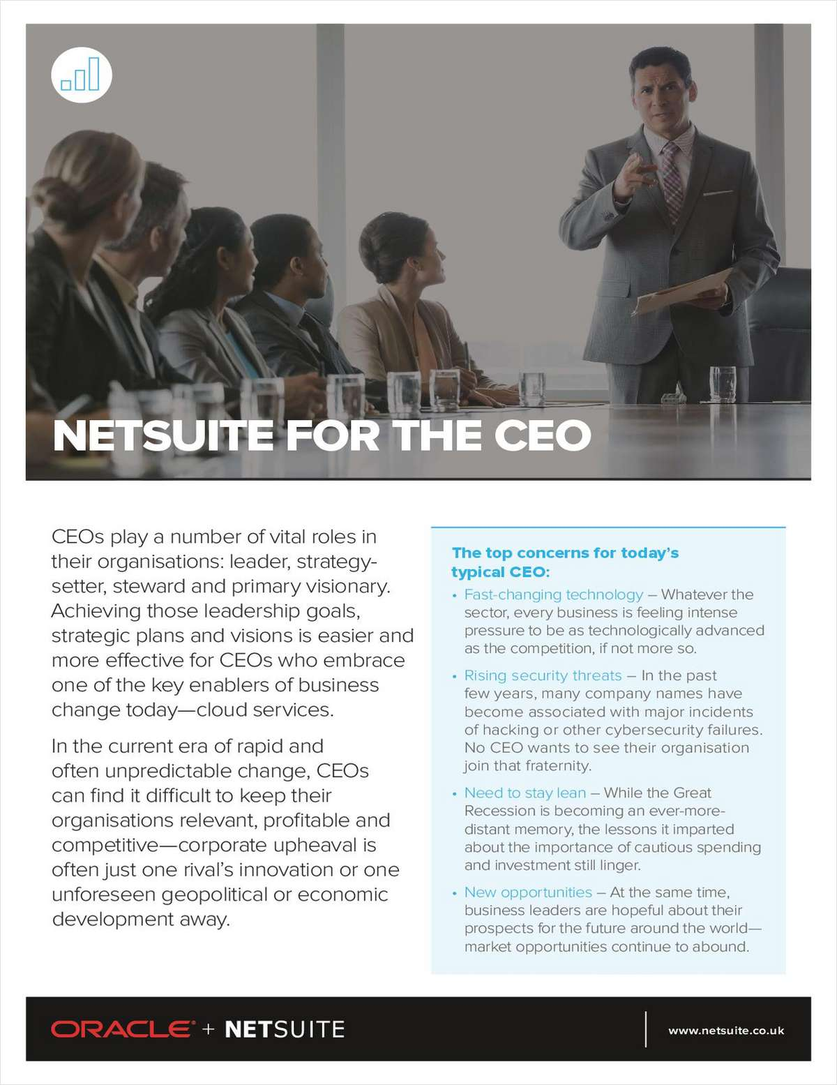 NetSuite for the CEO