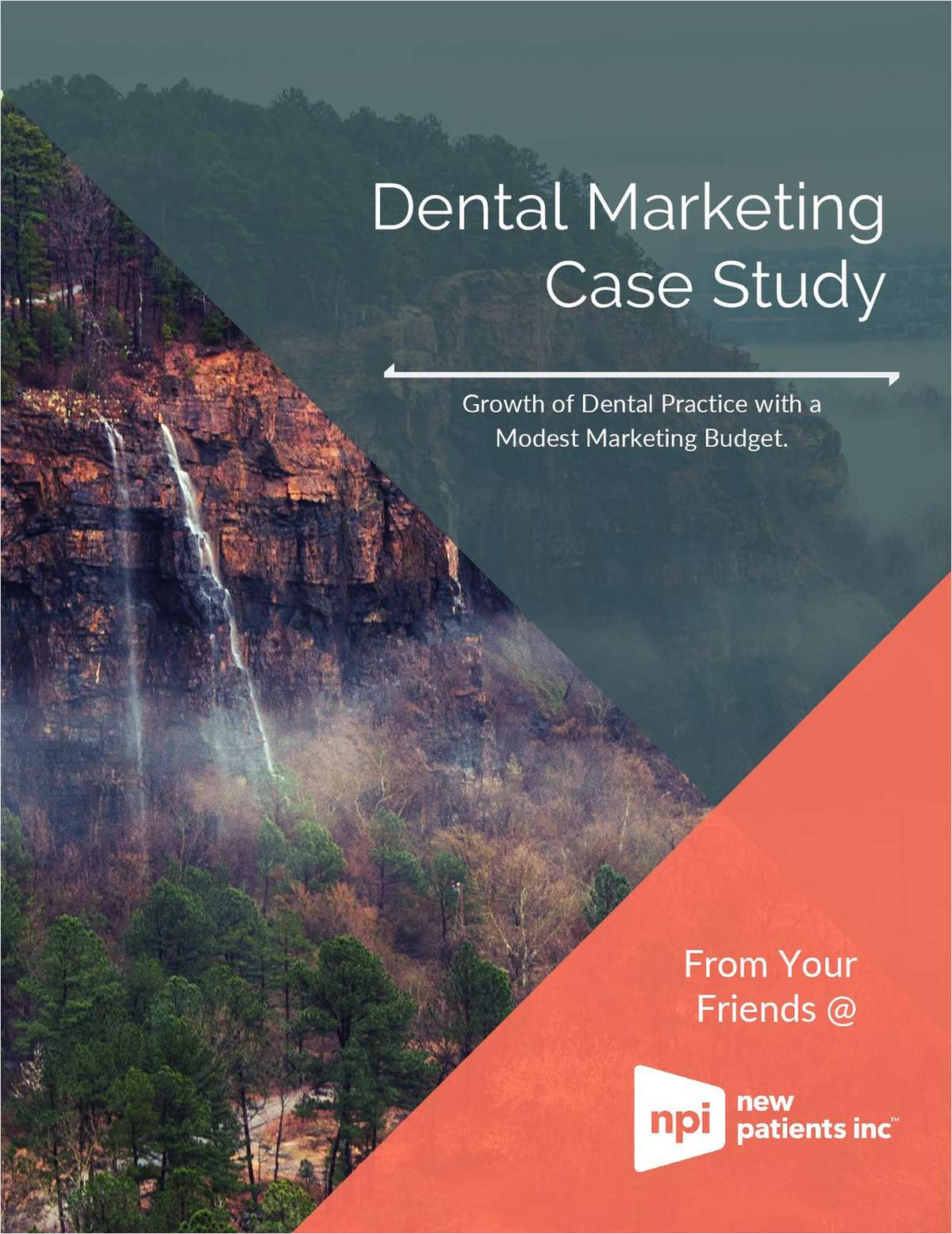Growing a Dental Practice with a Modest Marketing Budget