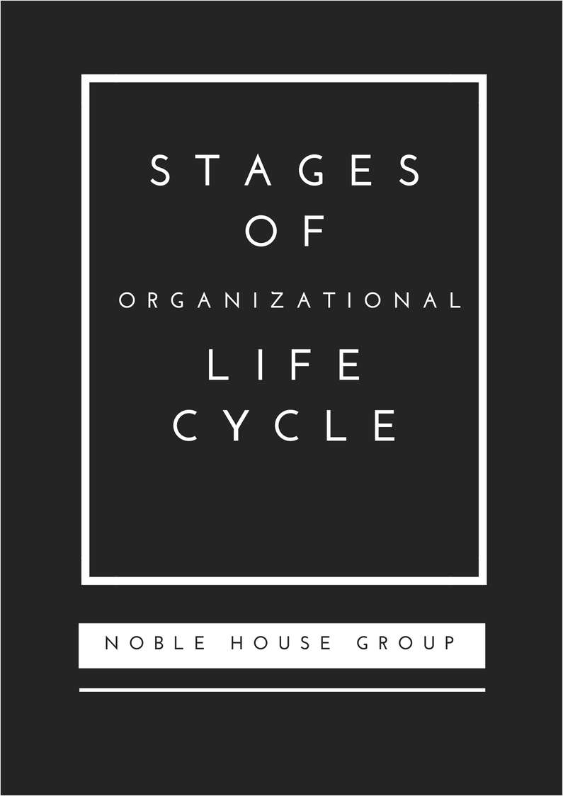 Stages of Organizational Life Cycle