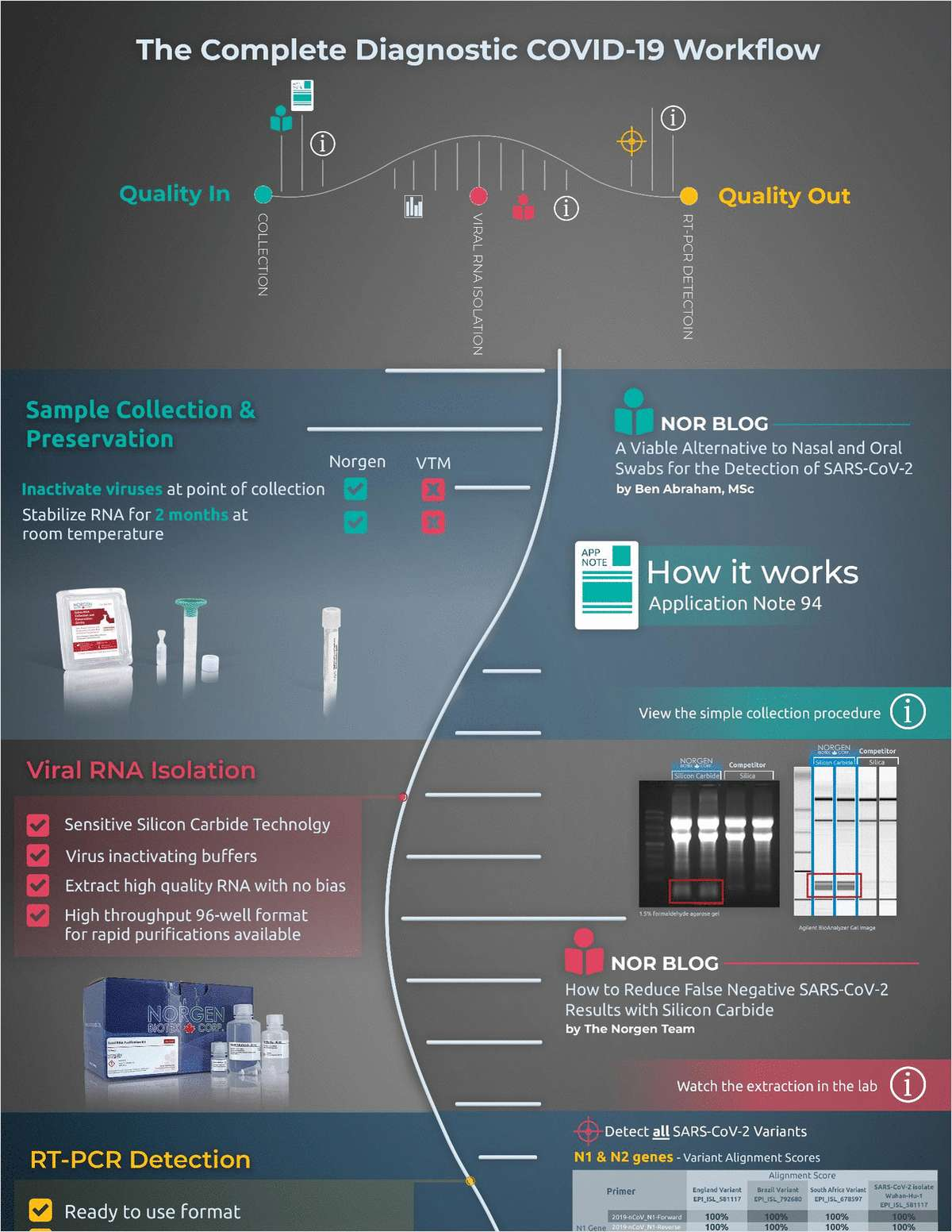 The Complete Diagnostic COVID-19 Workflow Infographic
