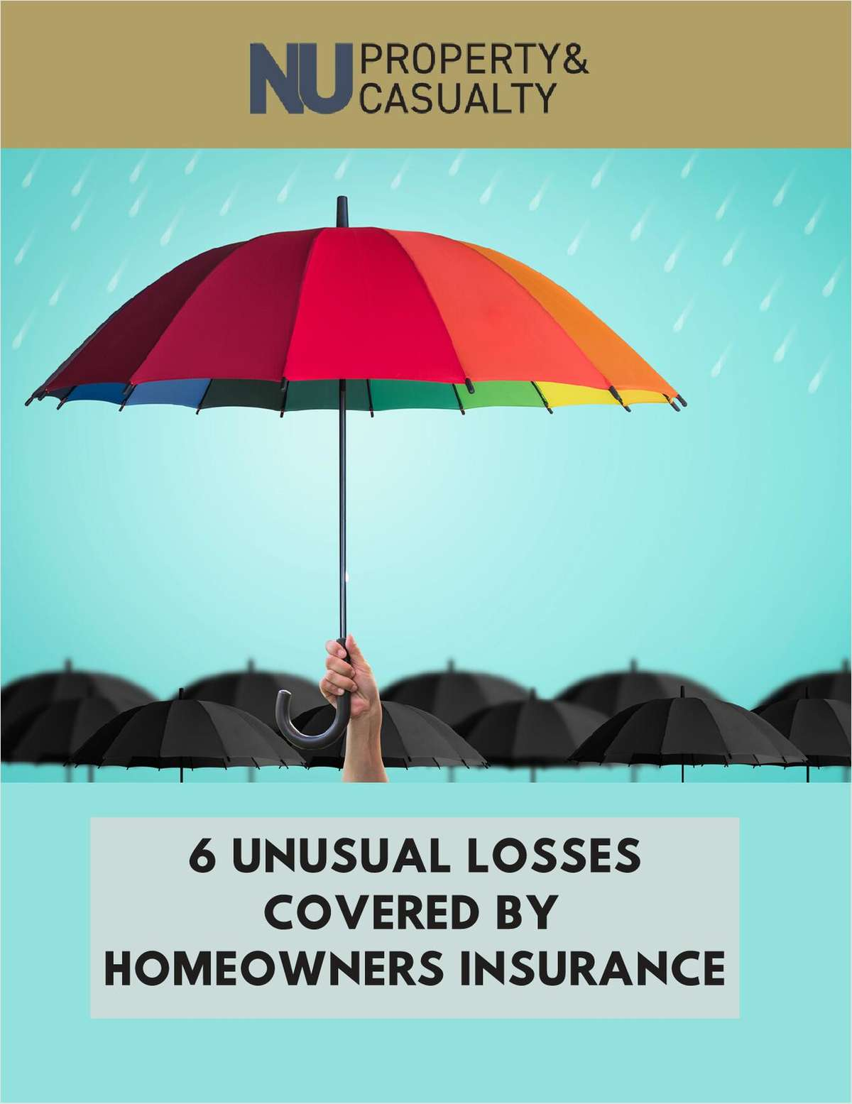 6 Unusual Losses Covered by Homeowners Insurance