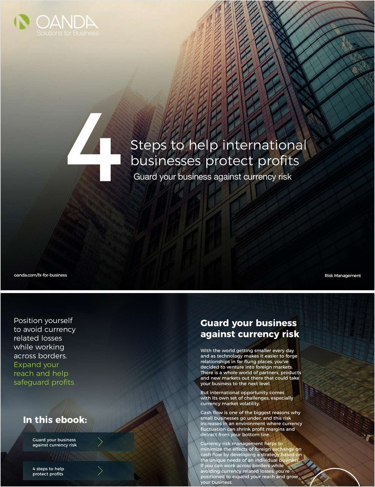 4 Steps to Help International Businesses Protect Profits