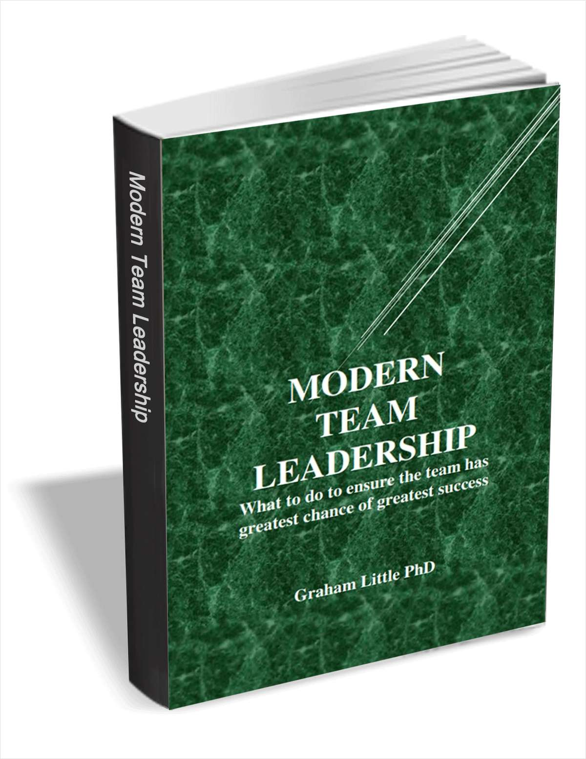 Modern Team Leadership - What to Do to Ensure the Team has Greatest Chance of Greatest Success