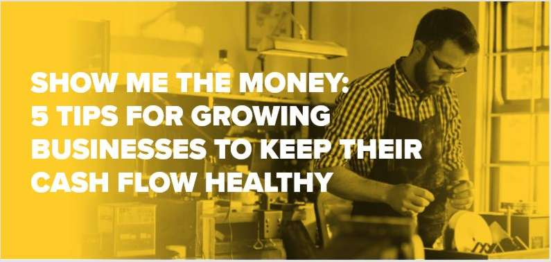 Show me the Money - For Fast Growing Businesses