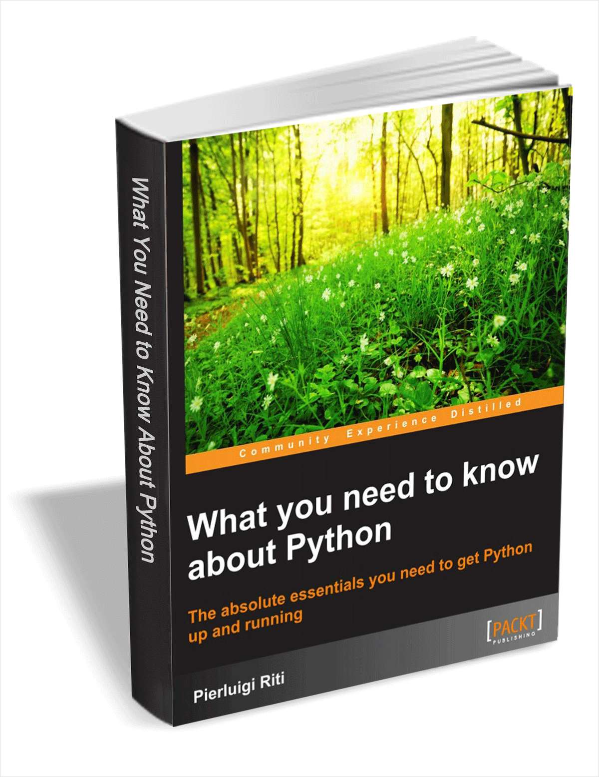 What You Need to Know About Python FREE For a Limited Time