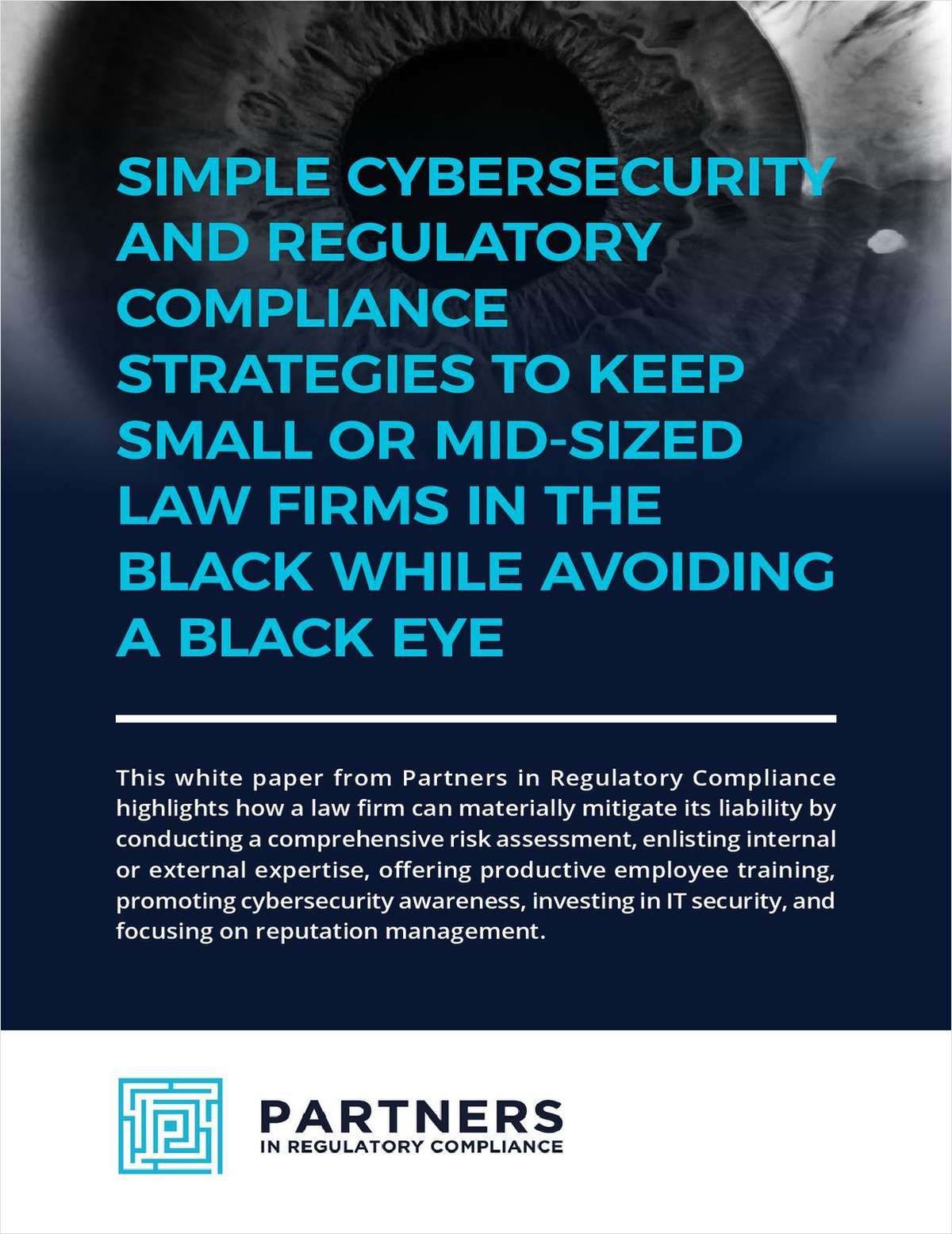 Simple Cybersecurity and Compliance Strategies to Protect Small or Mid-sized Law Firms