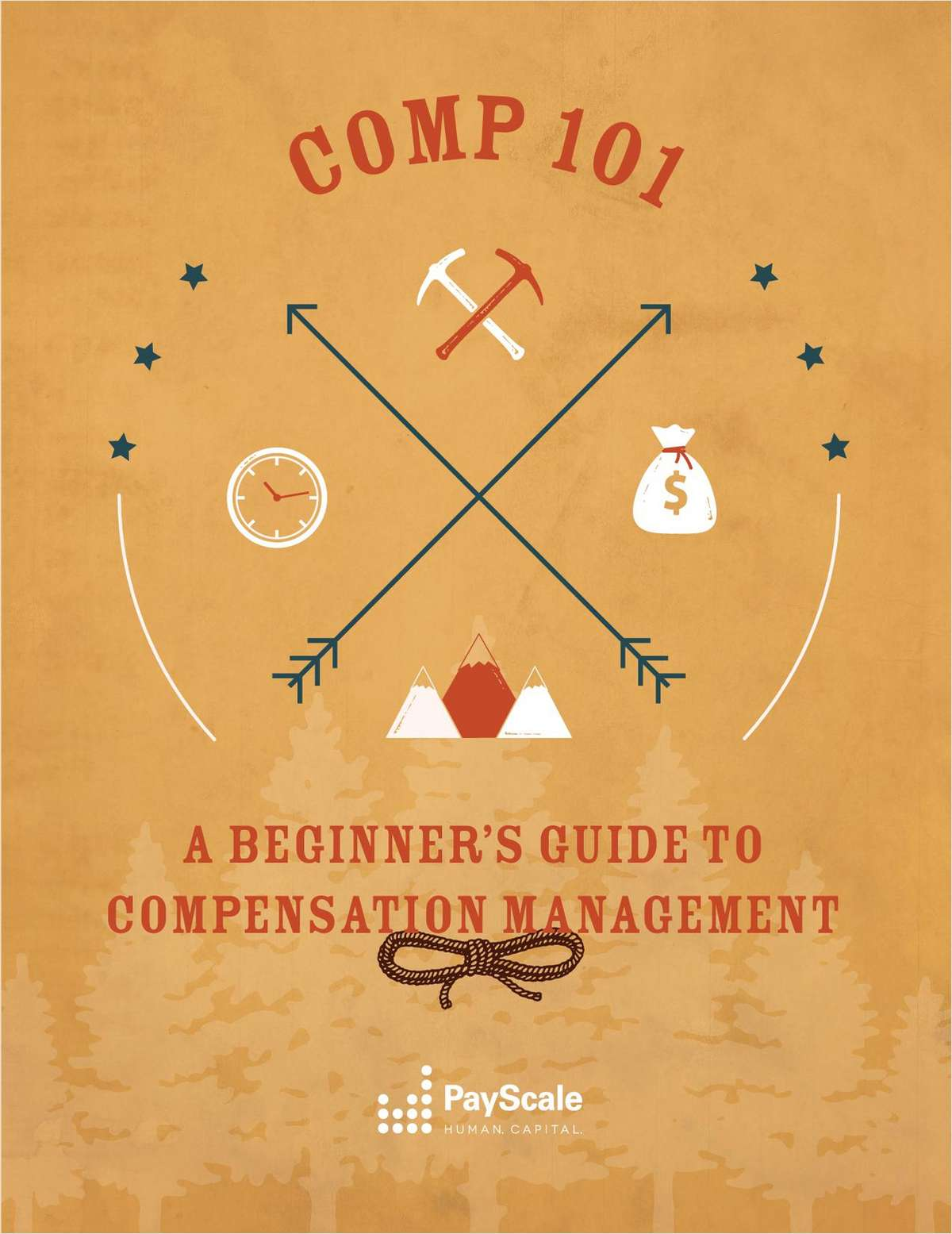 Compensation 101: A Beginner's Guide to Compensation Management