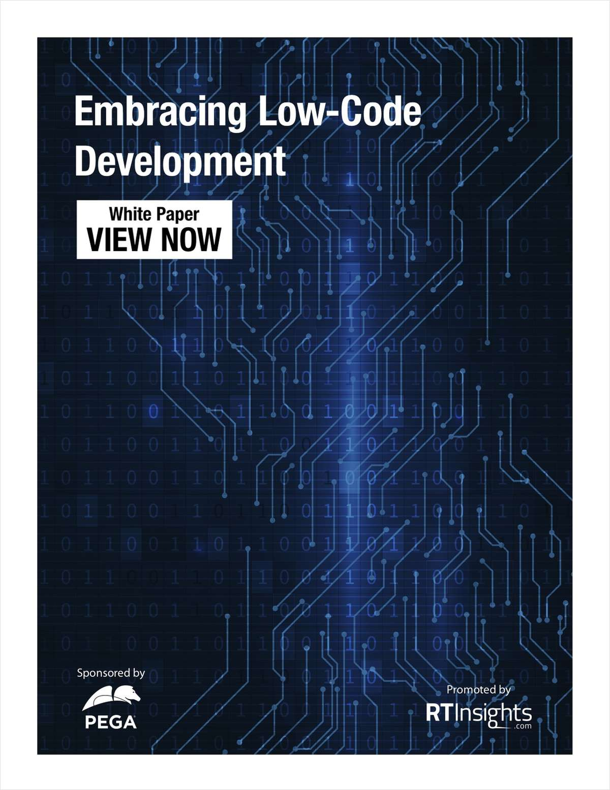 Accelerating Your Business with Low-Code Development