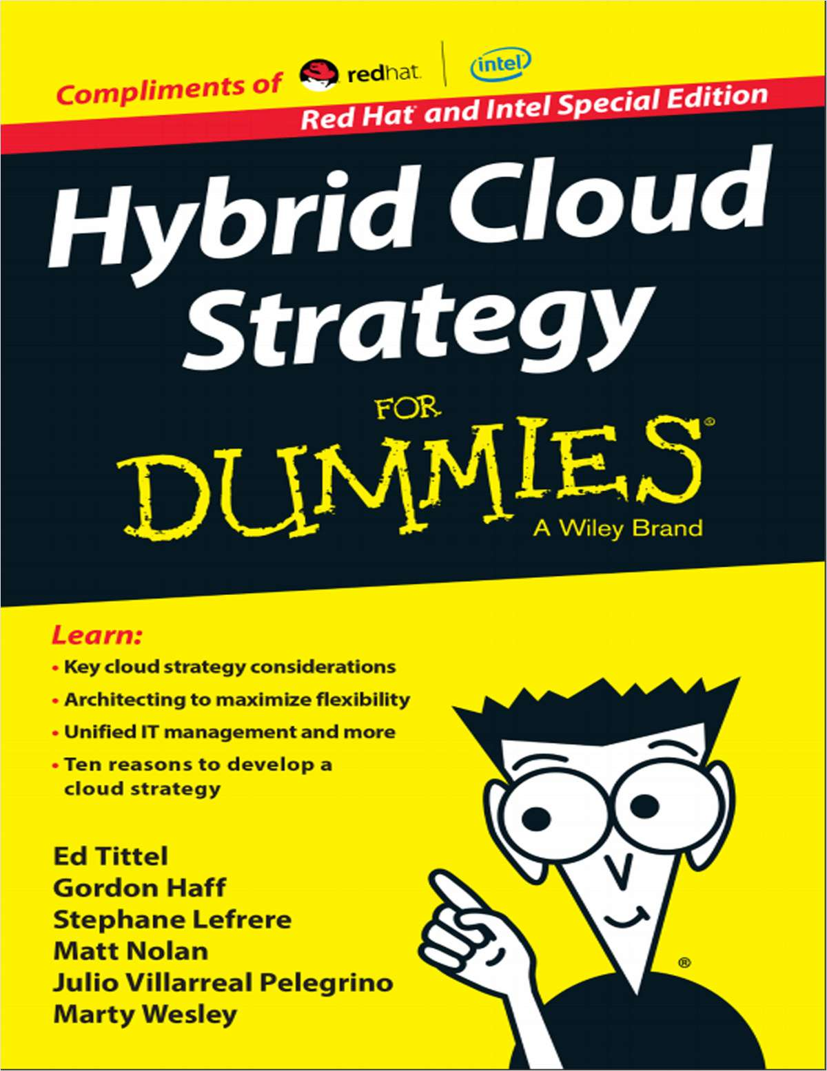 Hybrid Cloud Strategy for Dummies