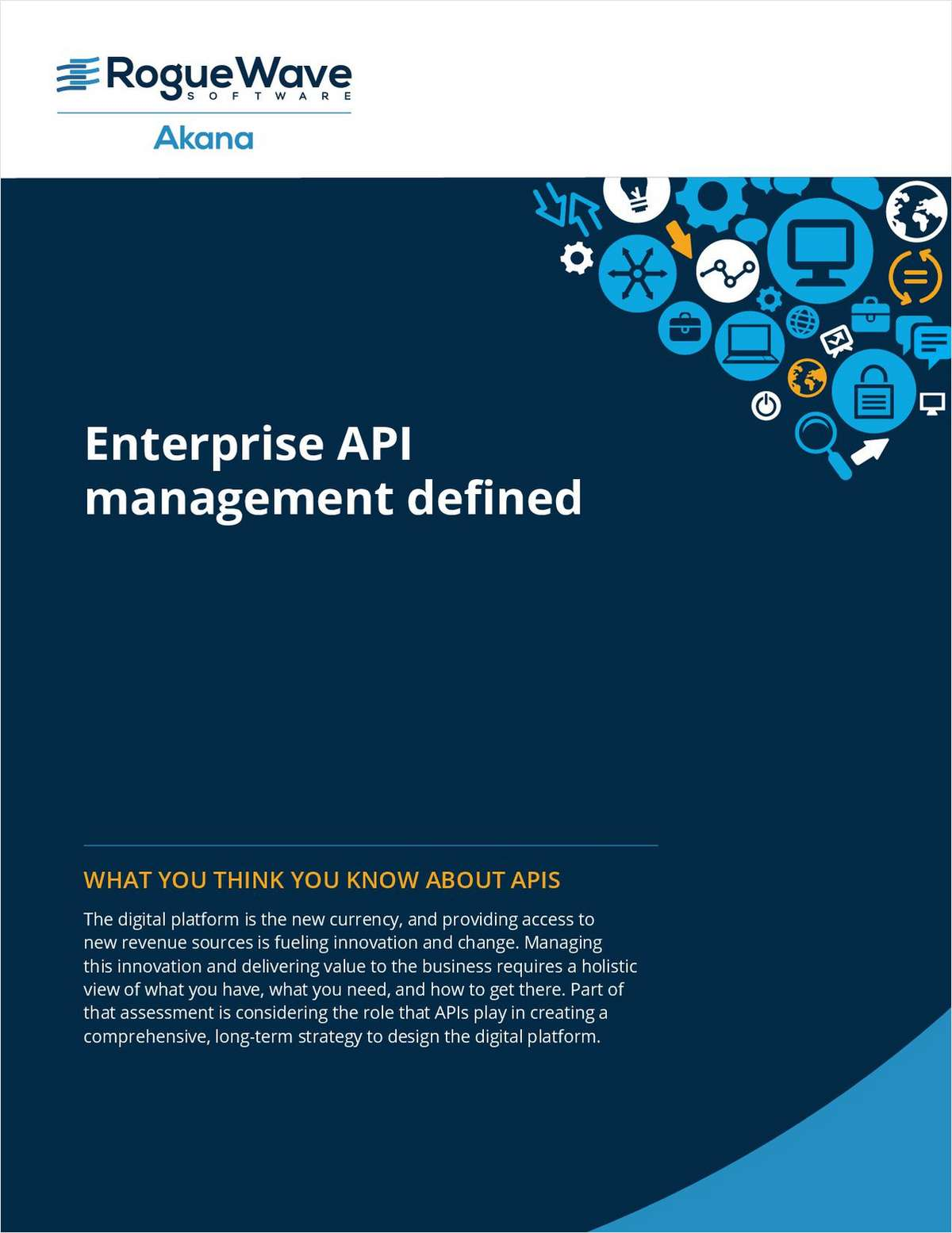 Enterprise API Management Defined