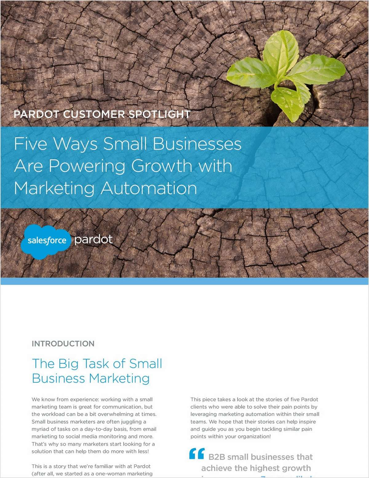 Five Ways Small Businesses are Powering Growth with Marketing Automation