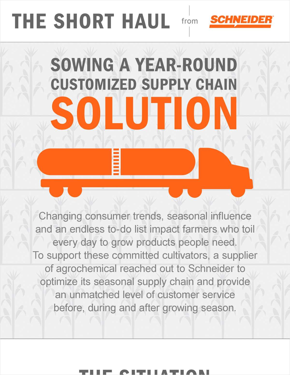 Sowing A Year-Round Customized Supply Chain Solution