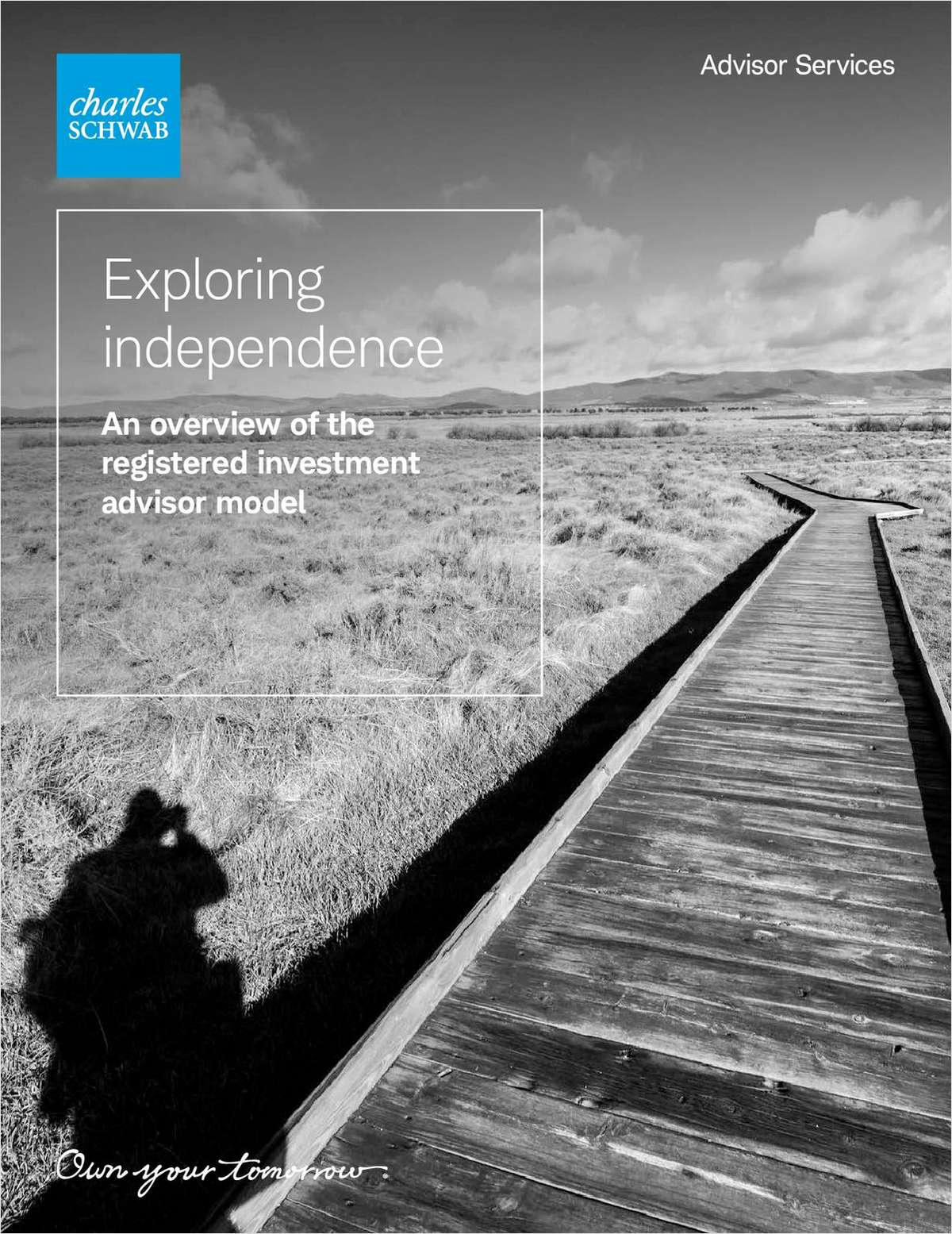 Exploring Independence: An Overview of the Registered Investment Advisor Model