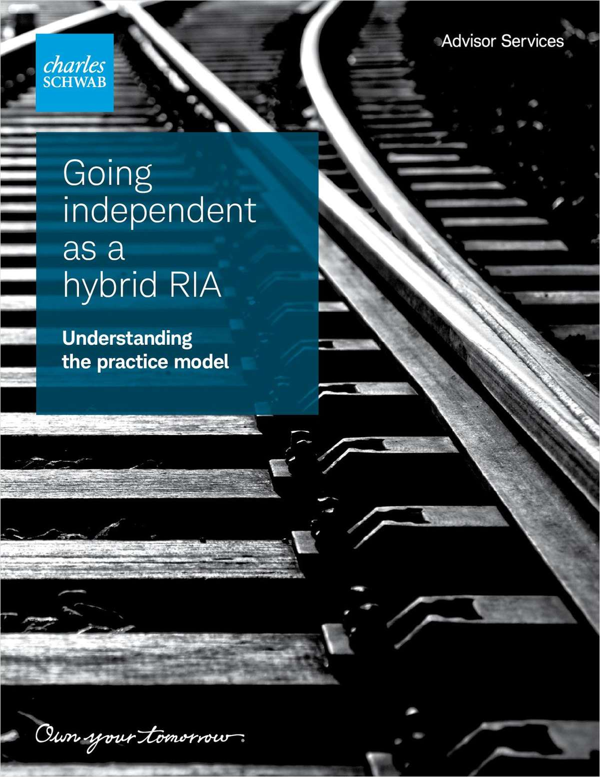 Discovering the hybrid RIA model