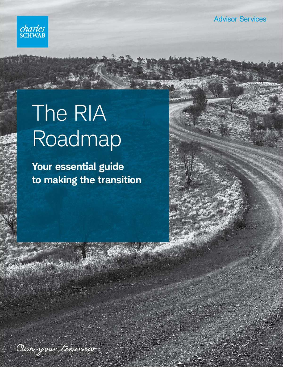 The RIA Roadmap: Key Steps to Going Independent