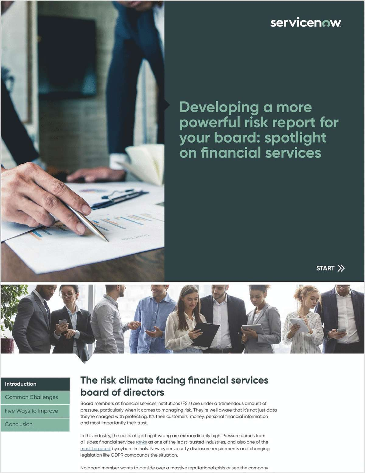 Developing a More Powerful Risk Report for Financial Services