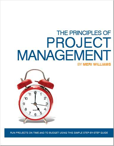 The Principles Of Project Management - Free 66 Page Preview!