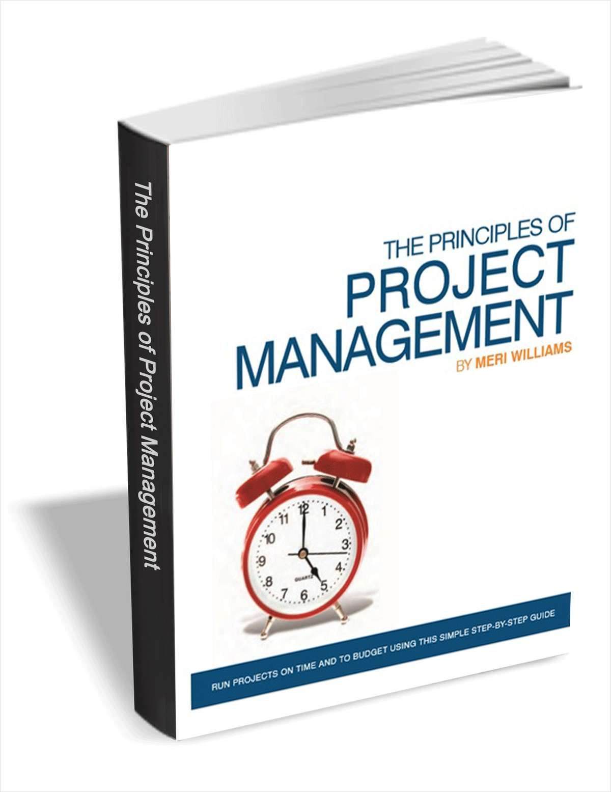 The Principles Of Project Management ($29 Value FREE For a Limited Time)