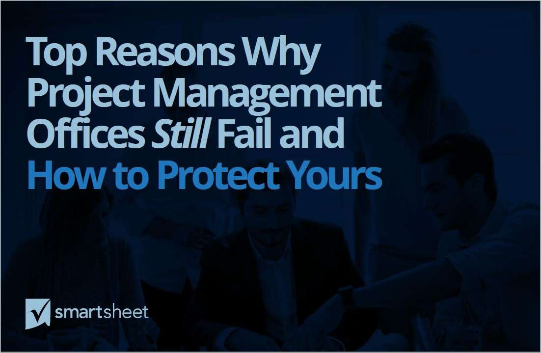 Top Reasons Why Project Management Offices Still Fail