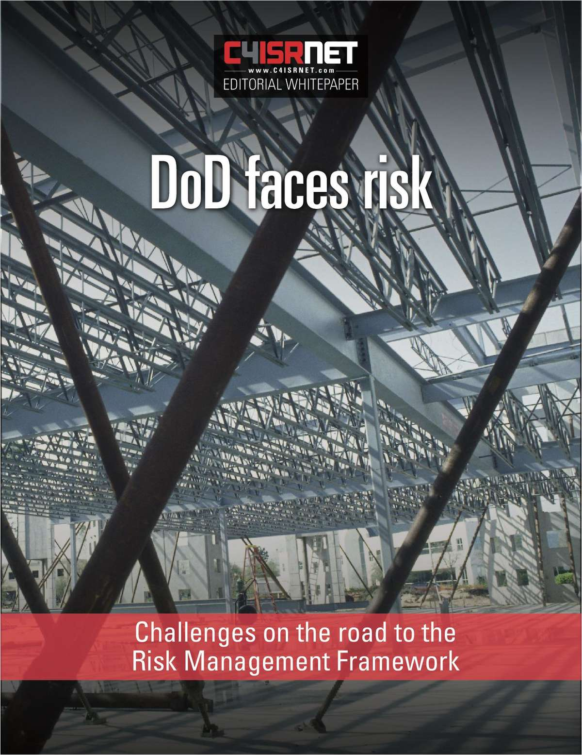 The Department of Defense Faces Risk