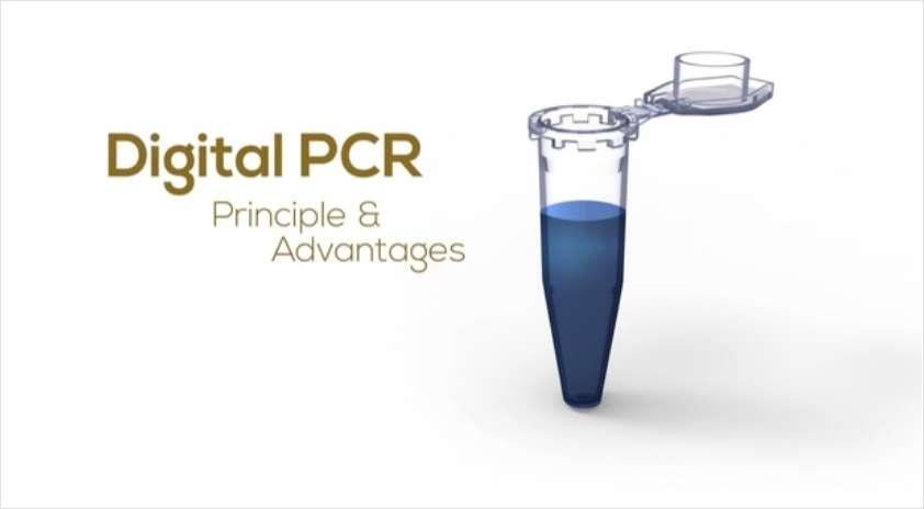 Digital PCR Principles and Advantages
