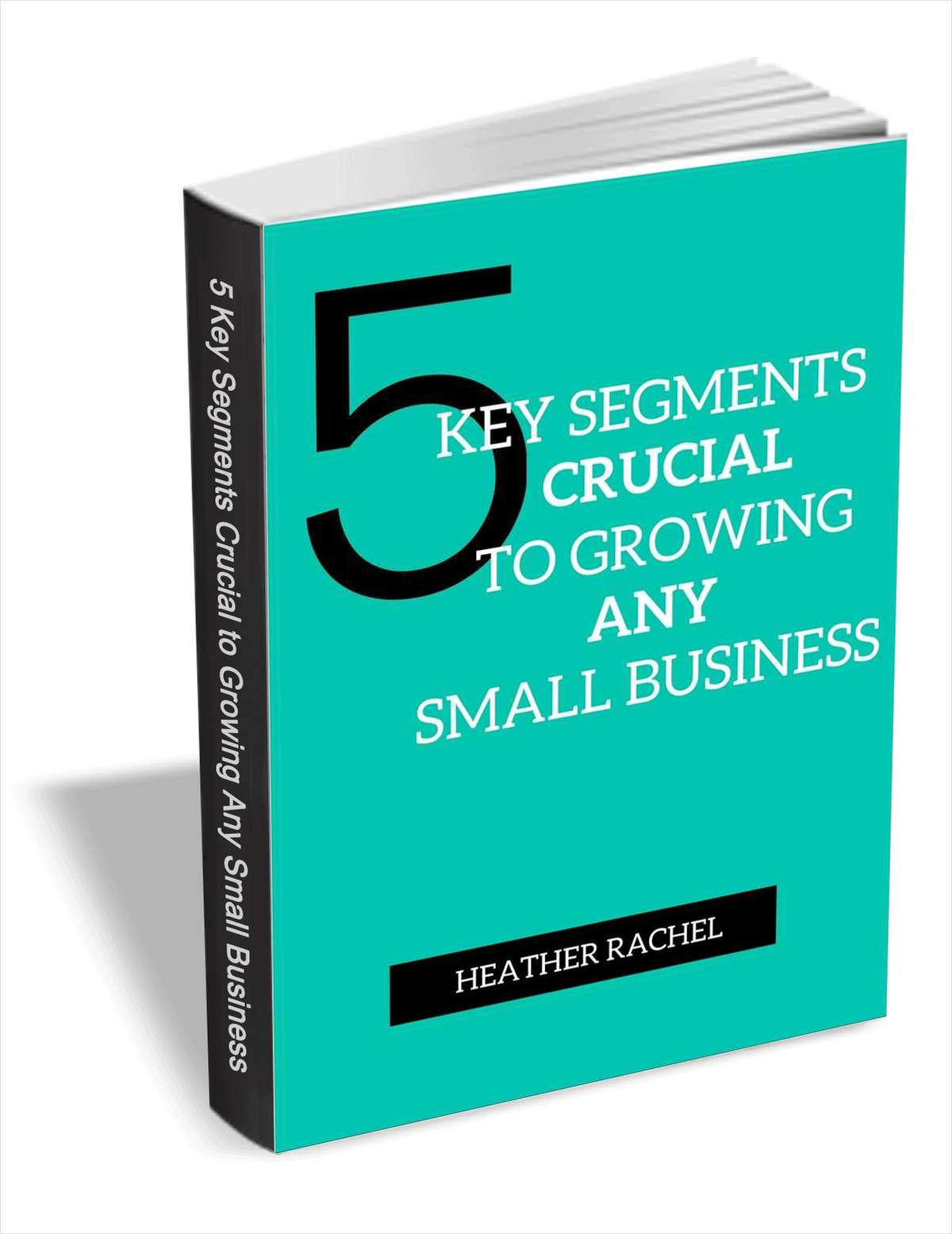 5 Key Segments Crucial to Growing Any Small Business