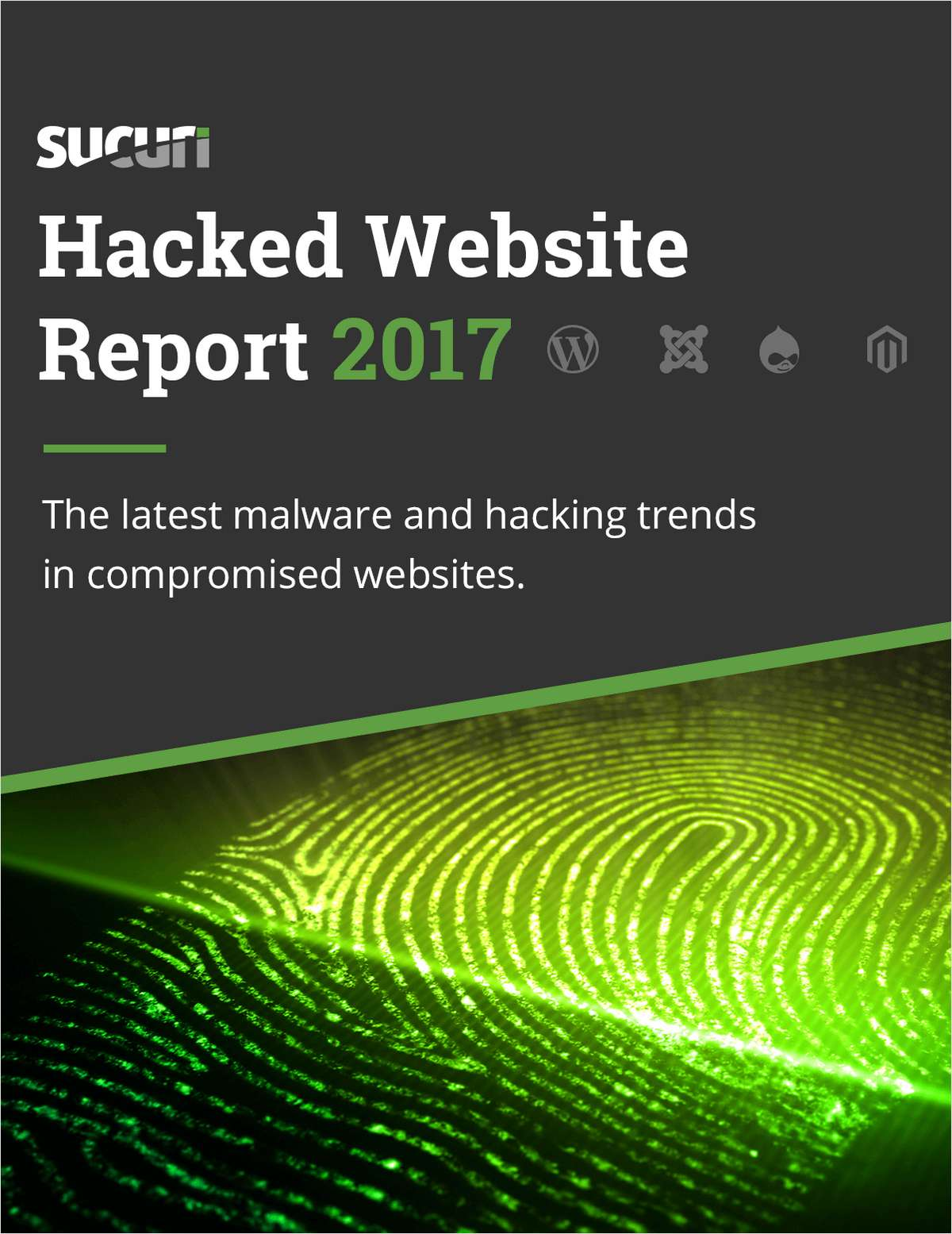 The Hacked Website Report