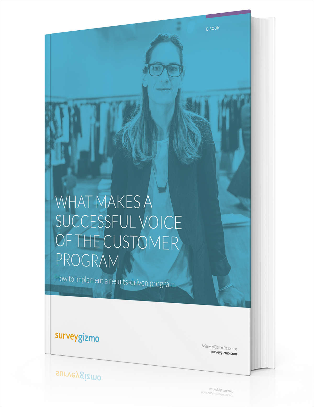 What Makes a Successful Voice of the Customer Program