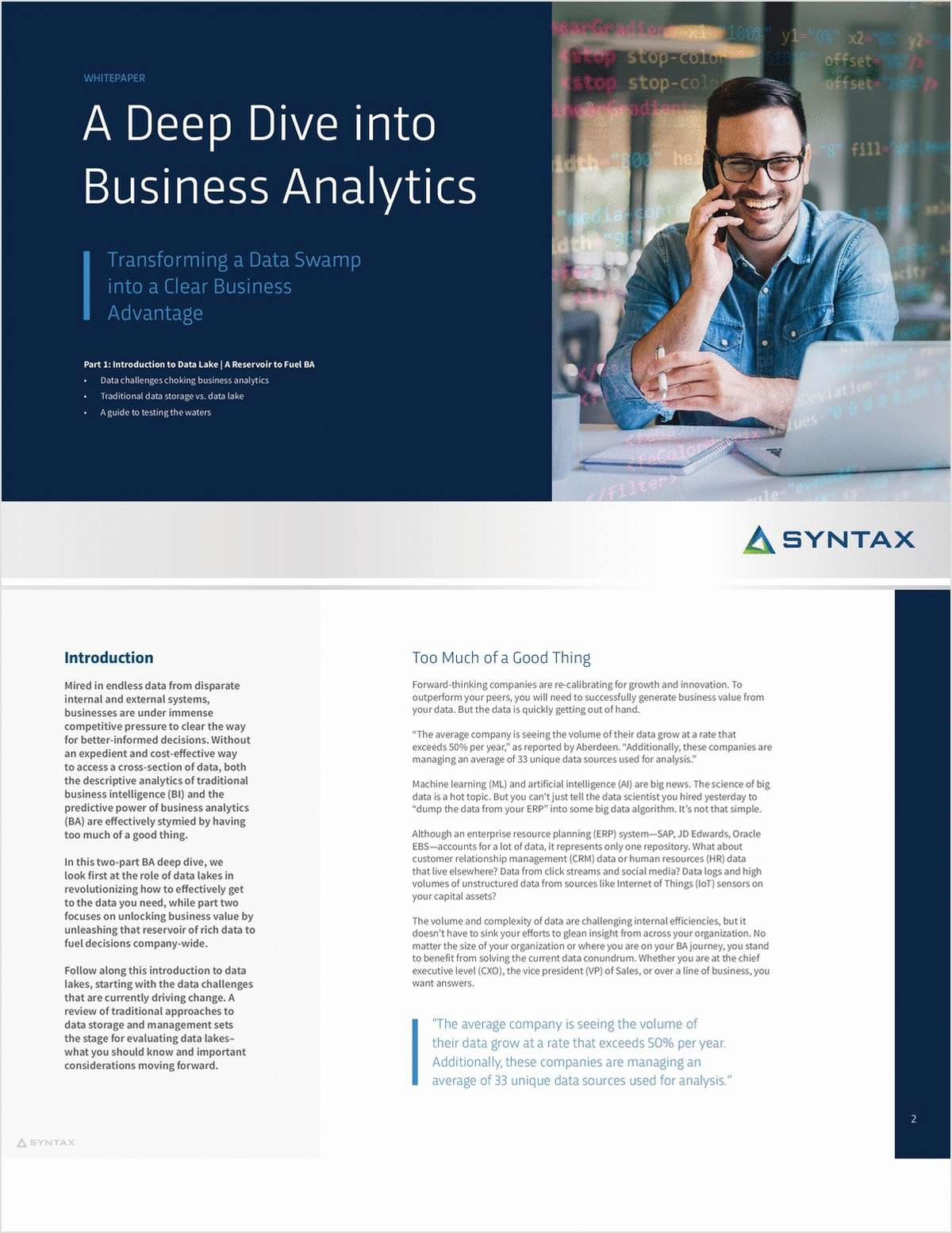 A Deep Dive into Business Analytics: Transforming a Data Swamp into a Clear Business Advantage