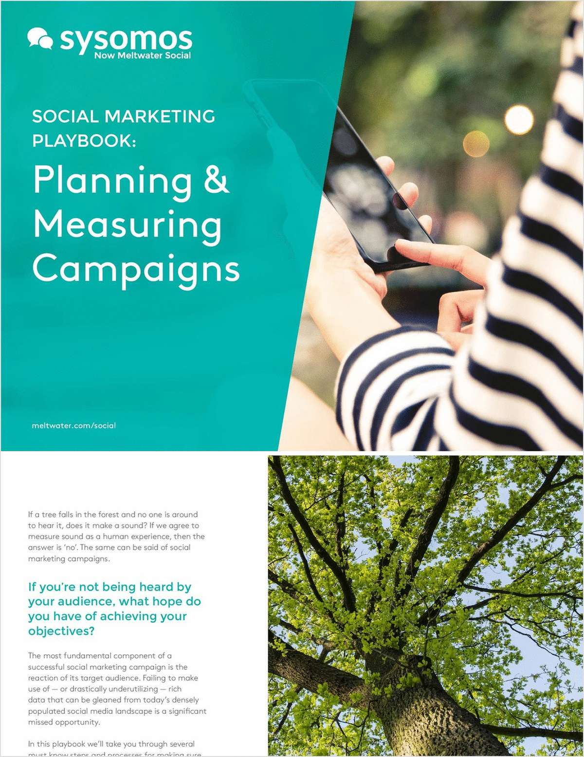 Best Practices for Utilizing Social Insights to Plan and Measure Campaigns