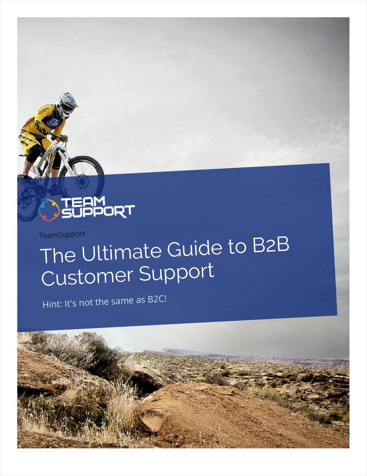 The Ultimate Guide to B2B Customer Support