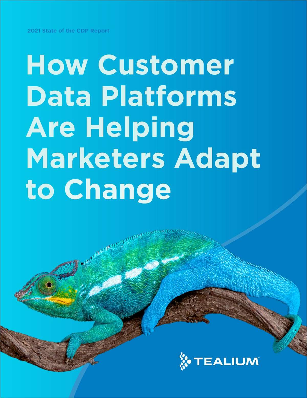 How Customer Data Platforms Are Helping Marketers Adapt to Change