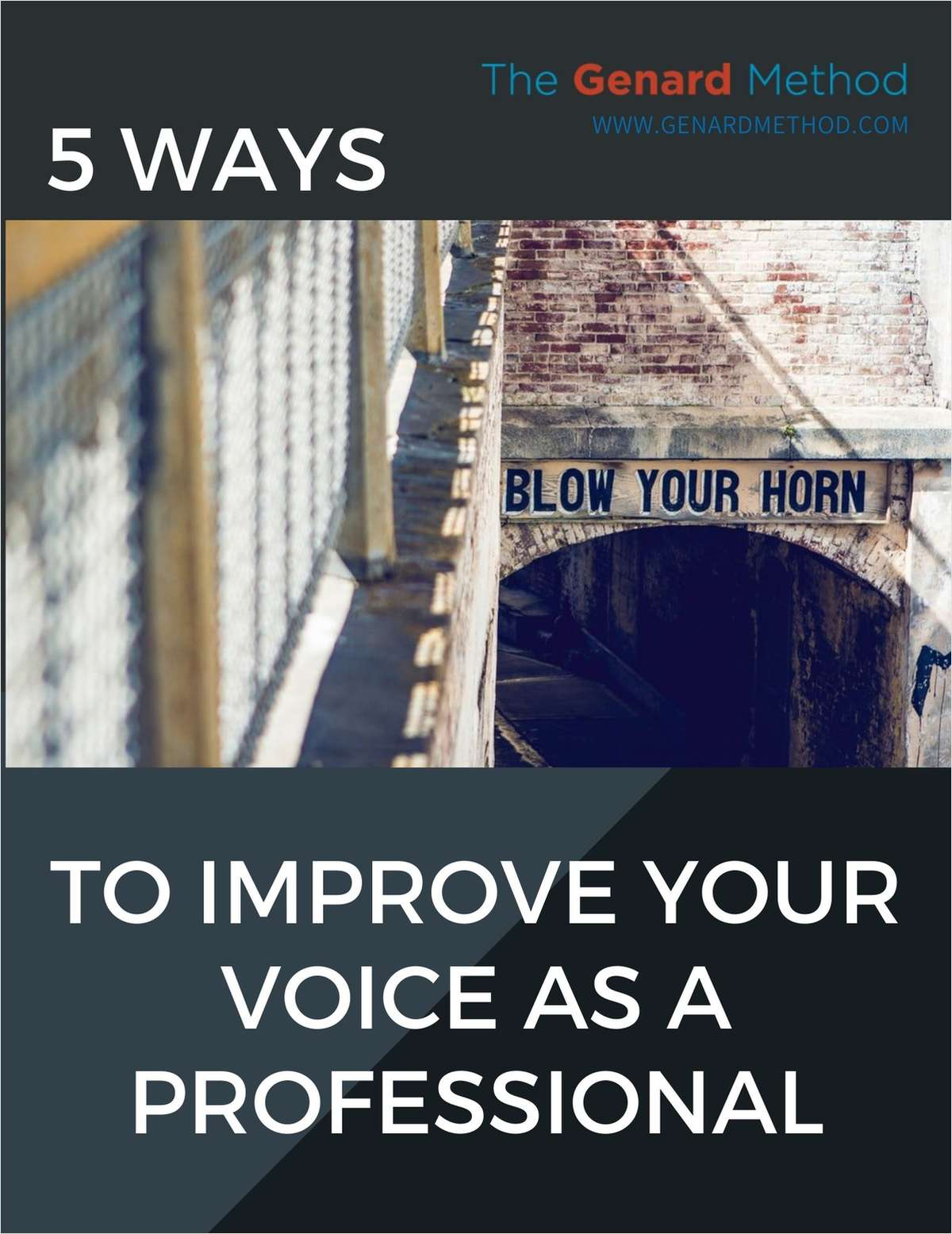 5 Ways to Improve Your Voice as a Professional
