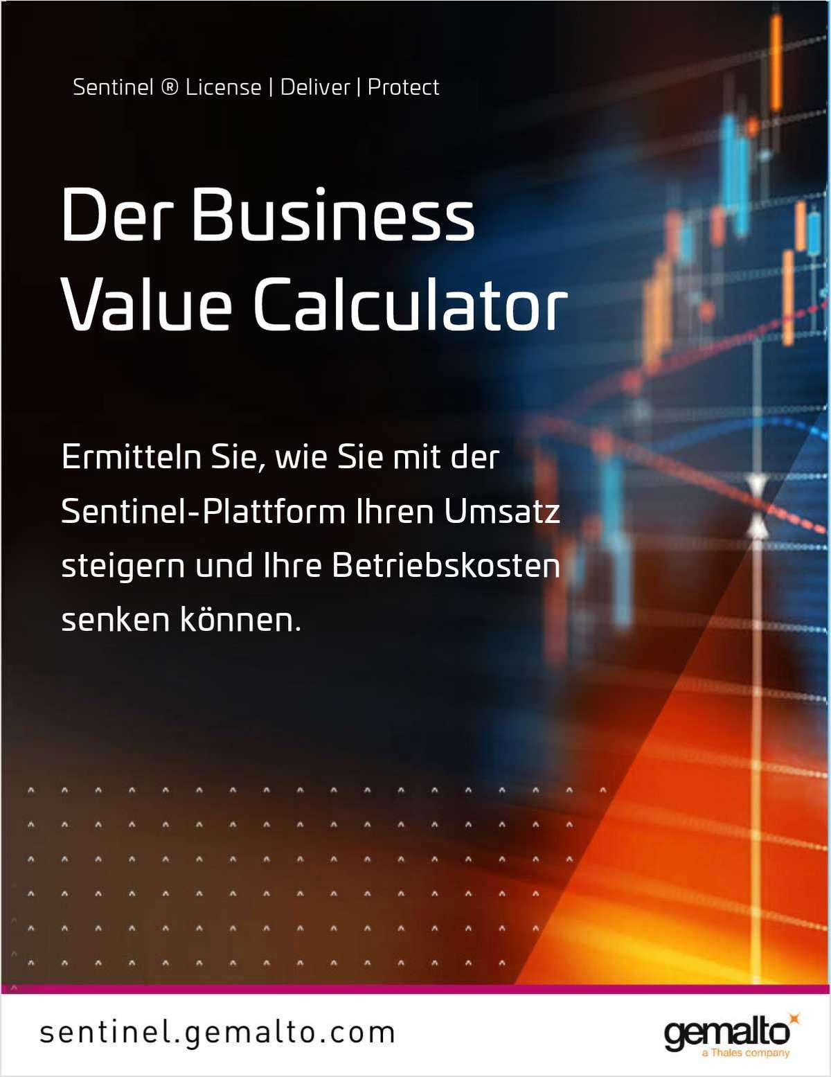 Der Sentinel Software Business Value Calculator