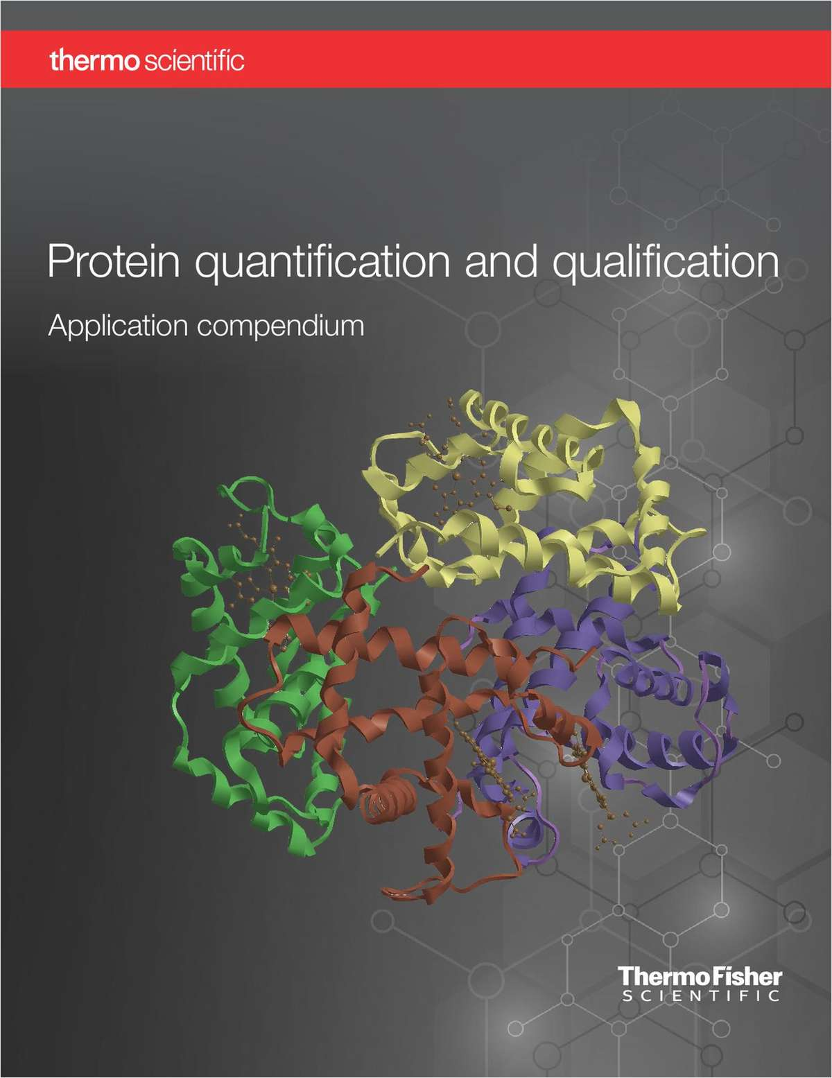 Protein quantification and qualification