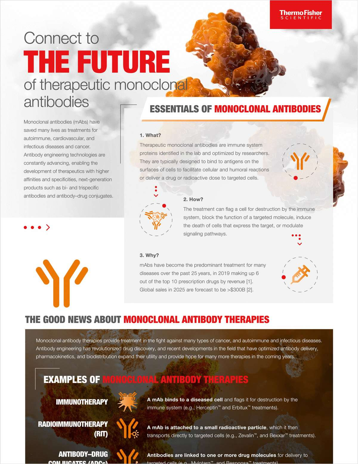 Connect to The Future of Therapeutic Monoclonal Antibodies
